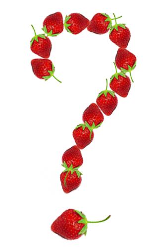 jordbær spørgsmålstegn