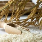Riskoger test – Skab asiatiske retter med perfekte ris