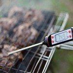 Weber stegetermometer – Grillsæsonen varer hele året!
