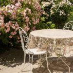 Alger på din terrasse? 5 ting du bør vide om behandlingen