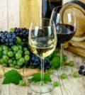 Hvidvin og rødvin