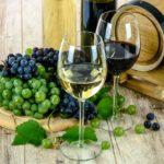 Vælg den rette vin til middagen